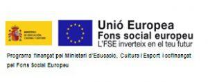 logo-fse_color-15